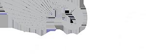 логотип бизфранчайз